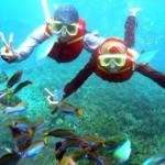 redang-island-snorkeling (Small)